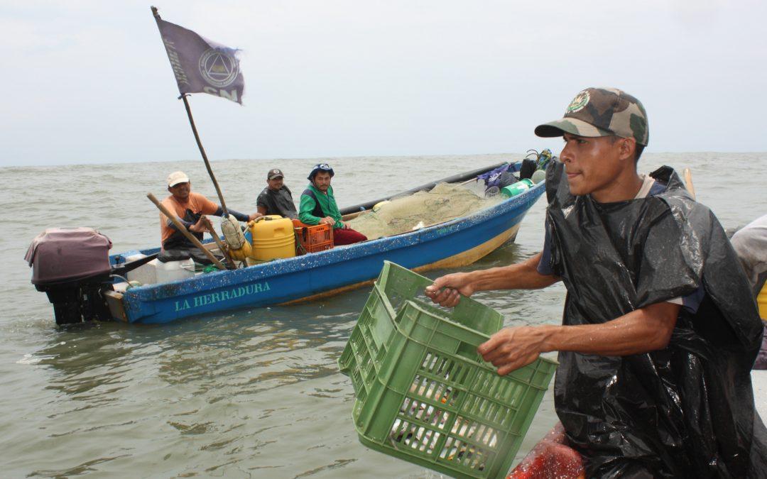 Pescadores salvadoreños visitan Galicia para intercambiar experiencias de pesca artesanal e de comercialización
